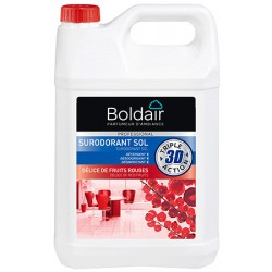 Lot de 2 bidons BOLDAIR surodorant 3D 5L délices fruits rouges