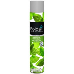 Lot de 6 aerosols desodorisants Boldair fraîcheur mentholee bactericide 500 ml