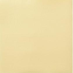 Carton de 900 serviettes jatables Celiouate unies ivoire 38 x 38 cm