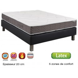 Matelas latex Epsilon anti-punaise 5 zones 160x200 cm