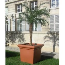 Pot carré lisse emboitable 51x51xH45 cm 110L